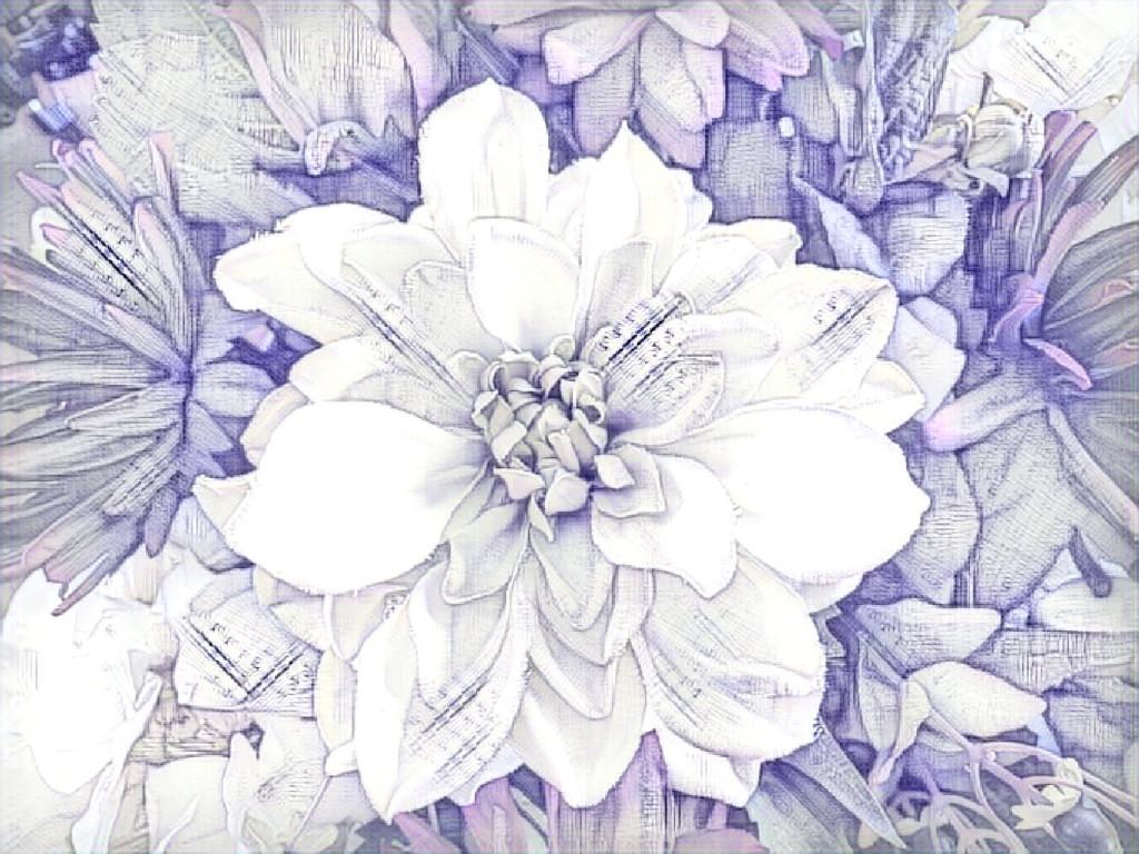 Artistic Flower by sprphotos
