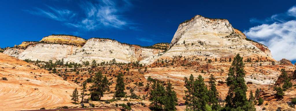 The Beauty of Zion by photograndma