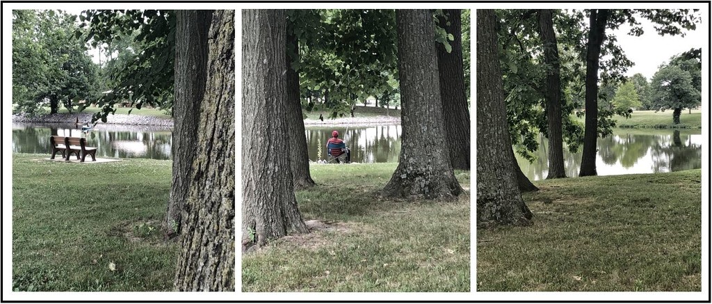 Drost Park Triptych by lsquared