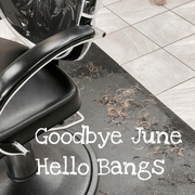 30th Jun 2020 - The Bangs Are Back
