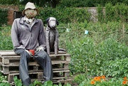 1st Jul 2020 - Mr Scarecrow and his dog