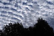 2nd Jul 2020 - Dappled Sky