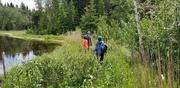 13th Jun 2020 - Beaver Dam Crossing