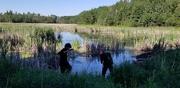 19th Jun 2020 - Frog Hunters