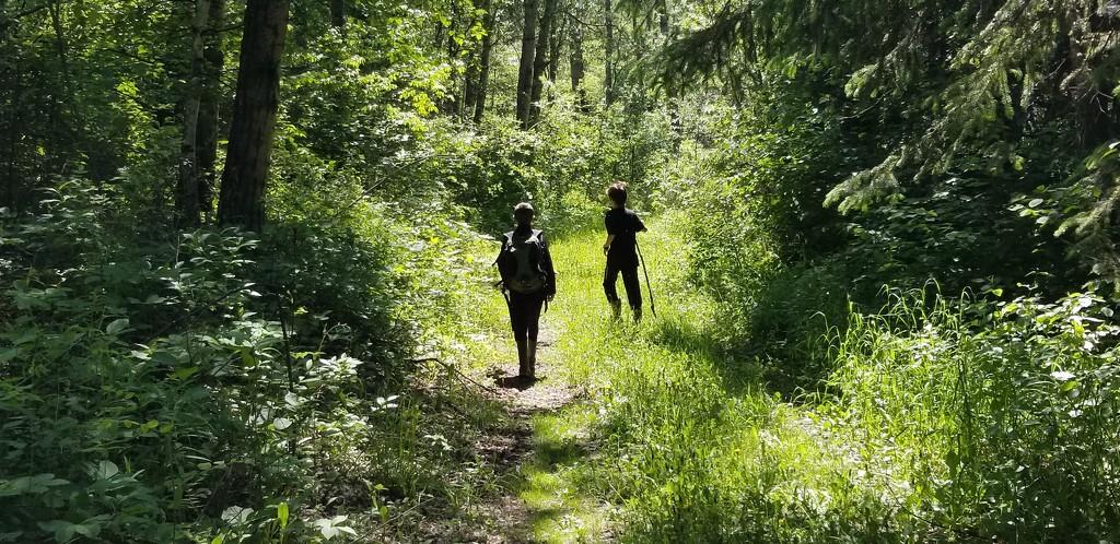 Hiking by schmidt