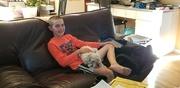 24th Jun 2020 - Dog Sitting