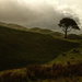 Lone Tree Valley by helenw2