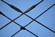 30th Jun 2020 - Bridge cables Xs