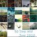 30 Days Wild Collage