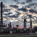 Petro-Canada Plant Sunrise