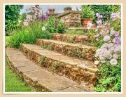 5th Jul 2020 - Old Steps