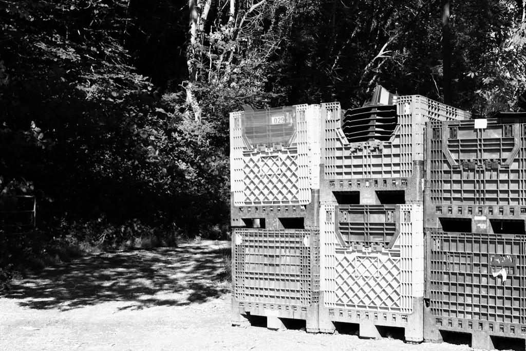 Boxes by allsop