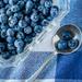 Blues by jernst1779