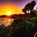 Another Laguna Sunset