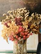 28th Jun 2020 - Dried Flowers
