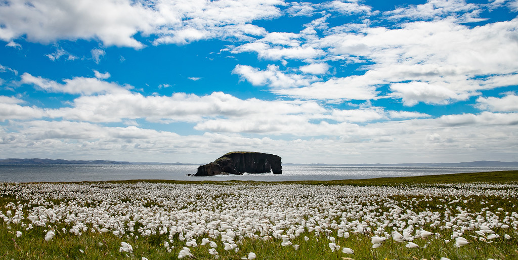 Dore Holm by lifeat60degrees