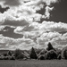 View across the fields...