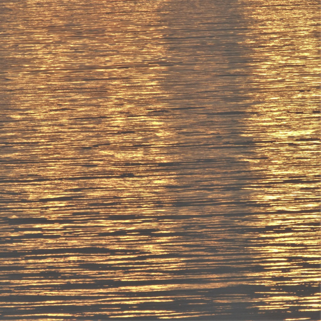 Golden Glow by radiogirl