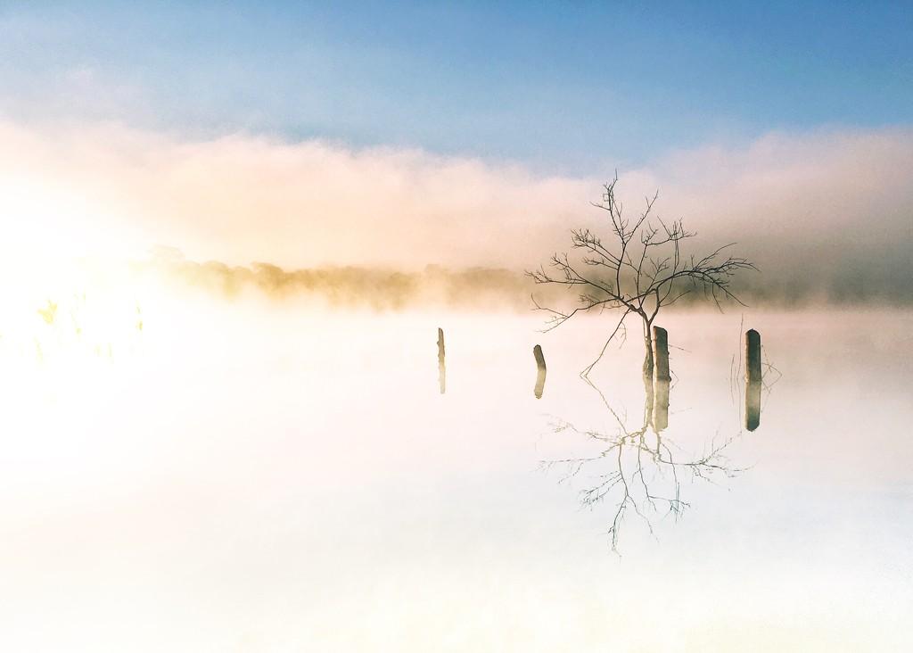 Misty Reflections  by zambianlass