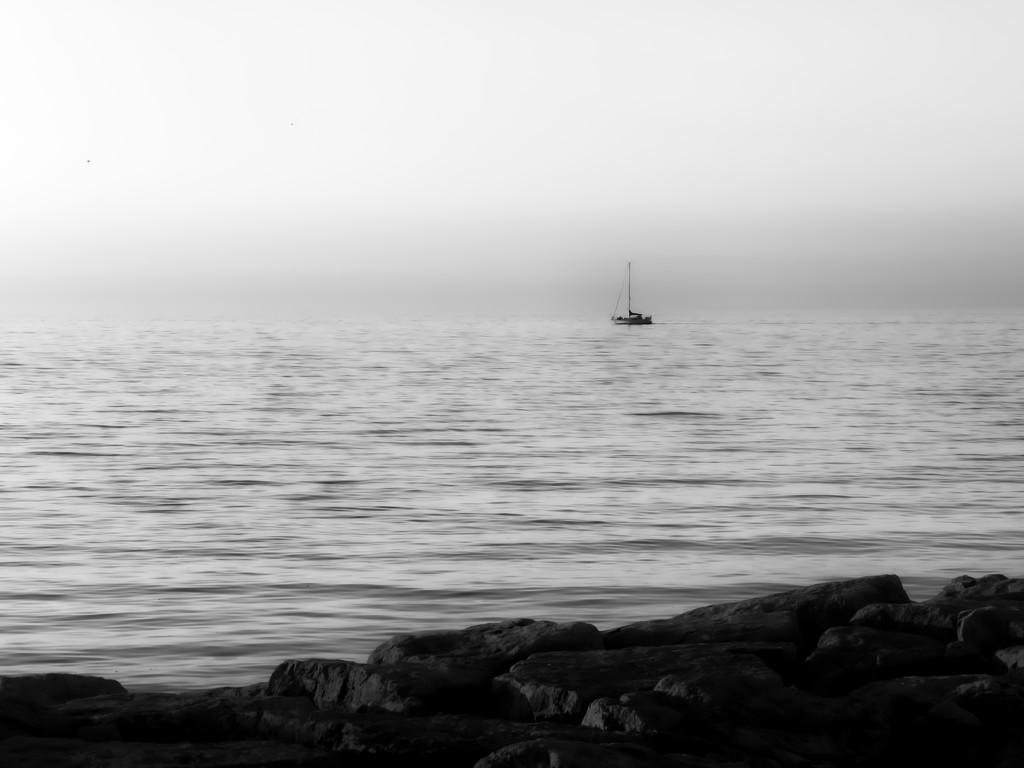 adrift at dawn... by northy