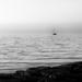 adrift at dawn...