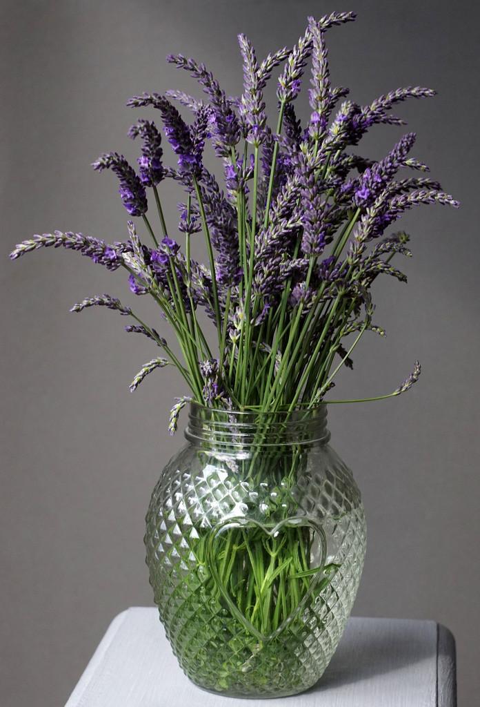 Lavender Still Life (Helios 44M-4 58mm vintage lens) by phil_howcroft