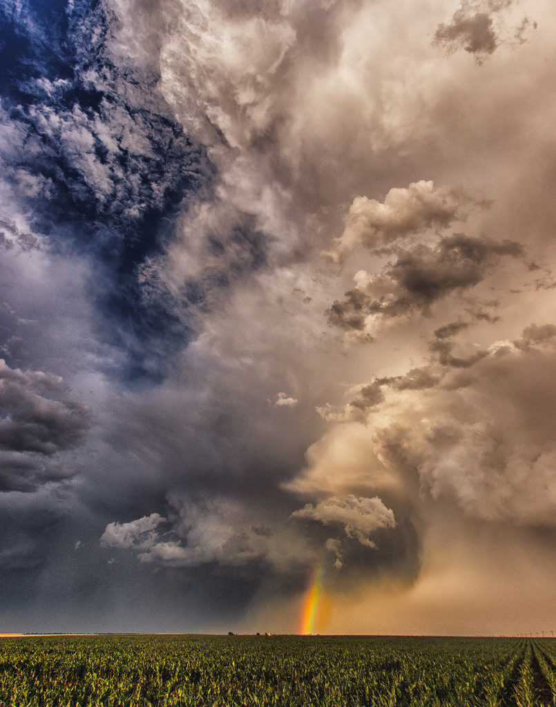 after the storm by aecasey