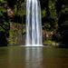 Millaa Millaa Falls by spanner