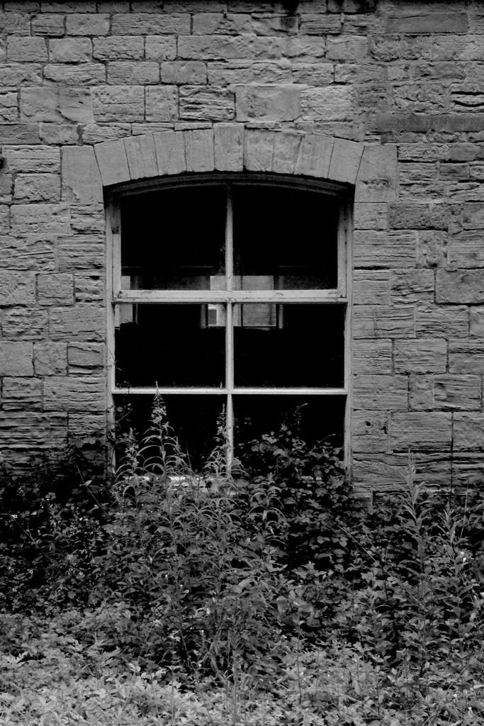 Mill Window by allsop