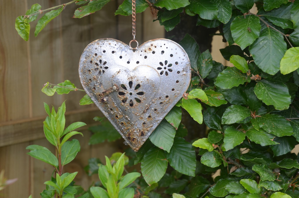 Rustic Heart by wakelys