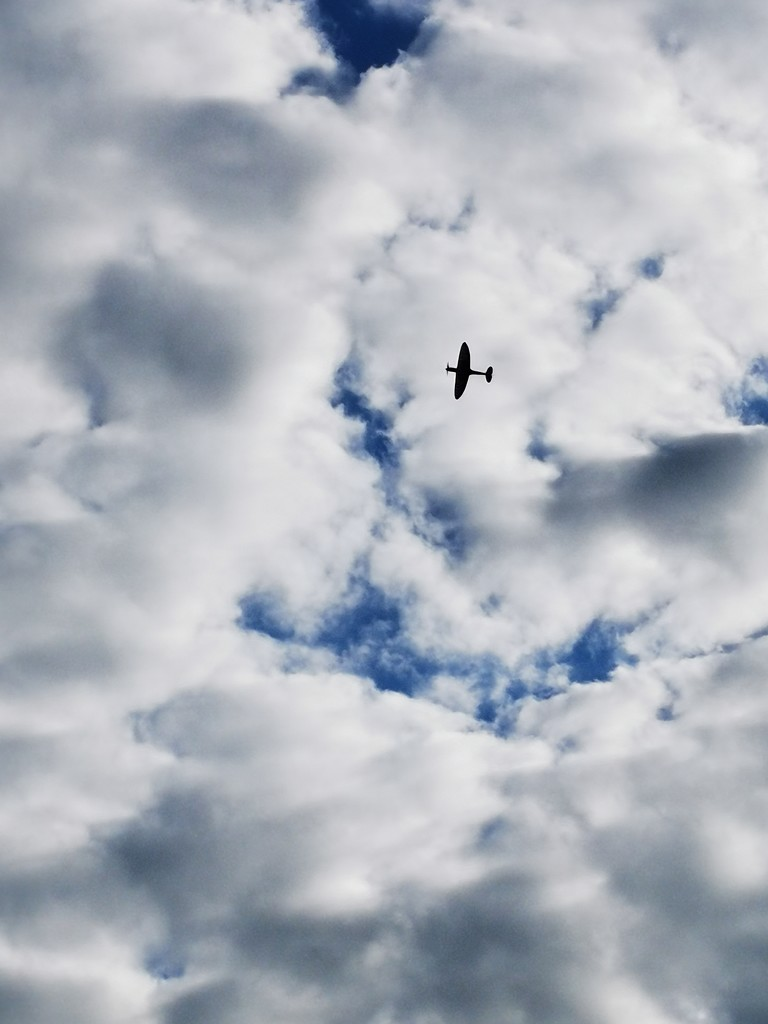 Spitfire Flypast  by plainjaneandnononsense