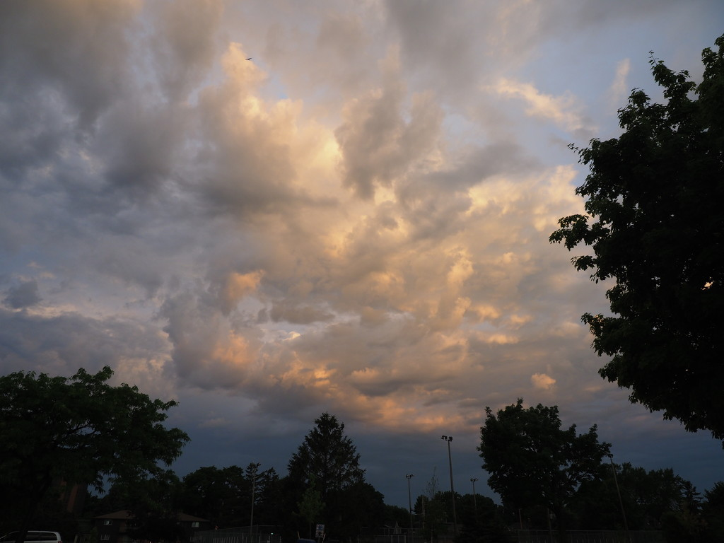 The Clouds Have It Kind of Day! by selkie