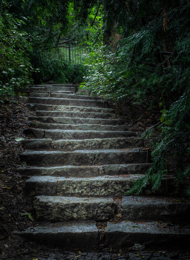 Secret passage by haskar