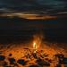193/365⁴ : camp fire