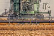 11th Jul 2020 - harvest combine