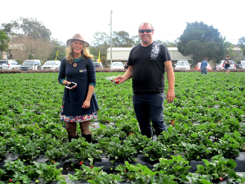 My daughter & her husband picking strawberries on my Birthday by 777margo