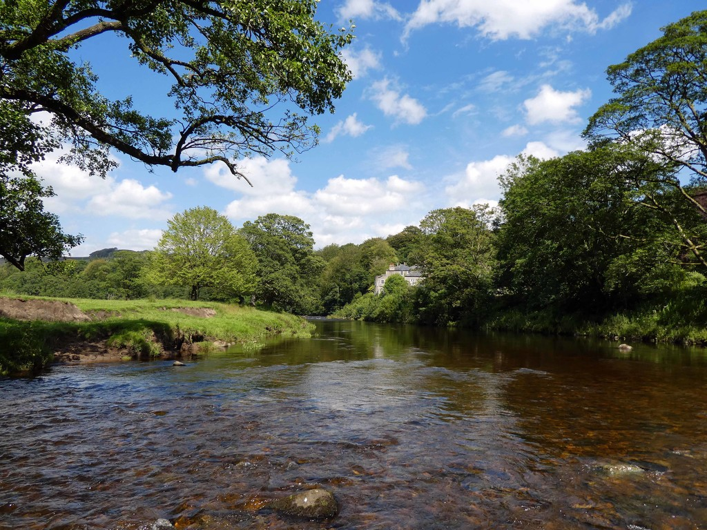 River Hodder by cmp