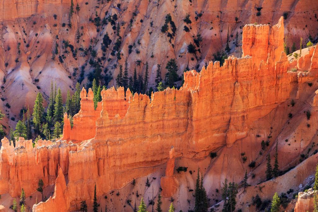 Bryce Canyon Up Close by photograndma