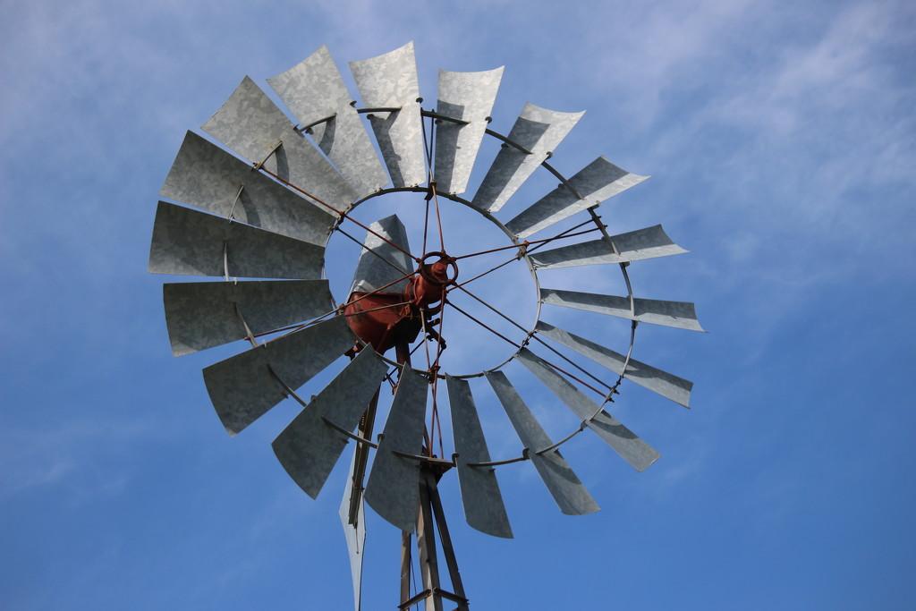 Windmill circle by jb030958