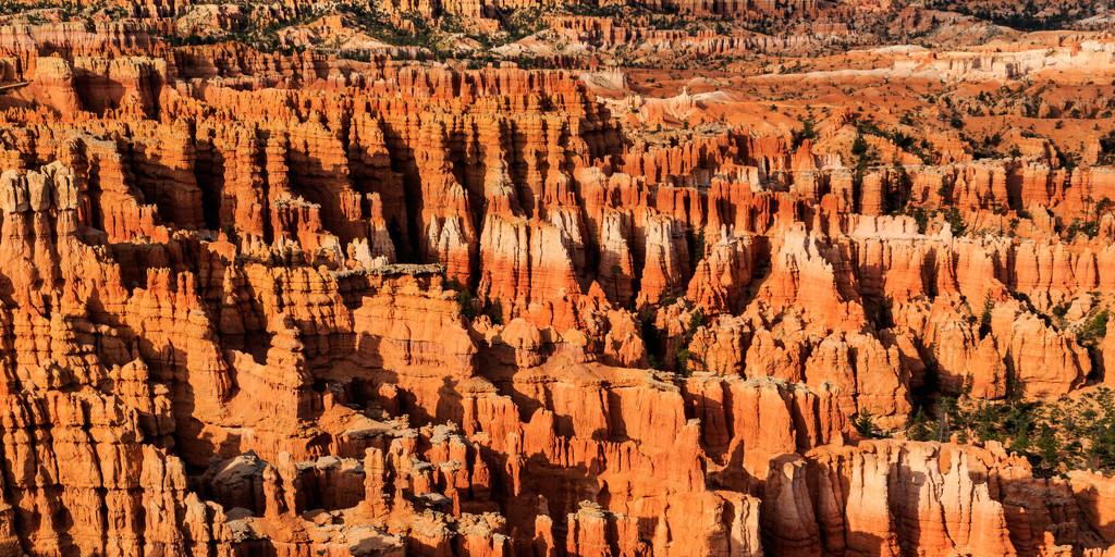 The Many Hoodoos of Bryce by photograndma
