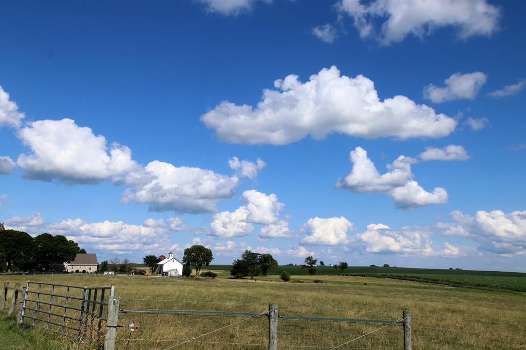 Big Sky by randy23