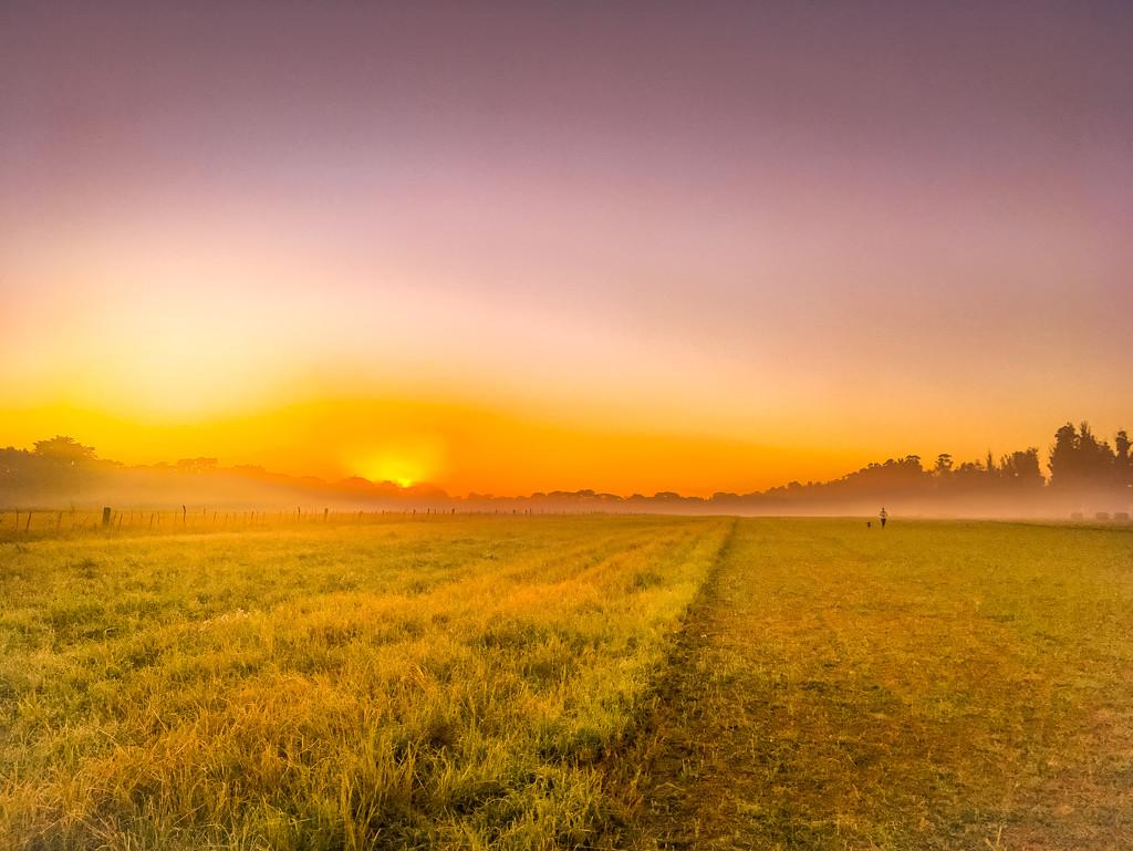 Morning Run by zambianlass