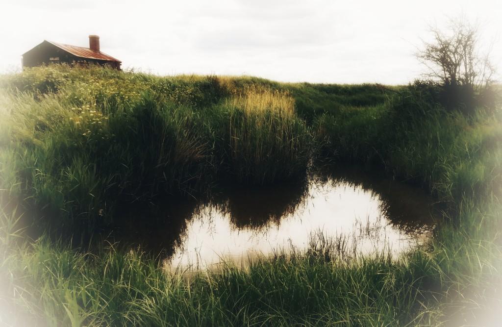 Fishing hut and pond by flowerfairyann