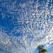 Popcorn sky by danette
