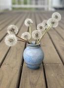 19th Jul 2020 - Flowers for Grandma