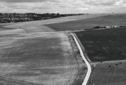 21st Jul 2020 - Across the fields