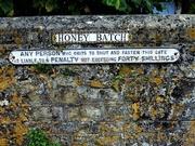 8th Jul 2020 - Honey Batch