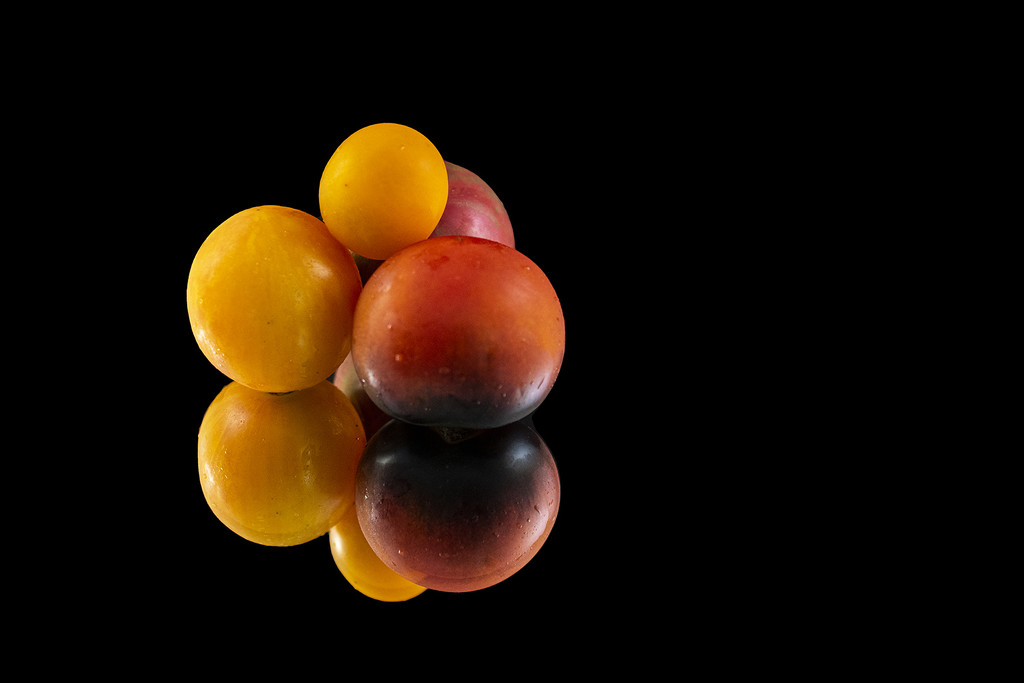 Tomatoes by k9photo