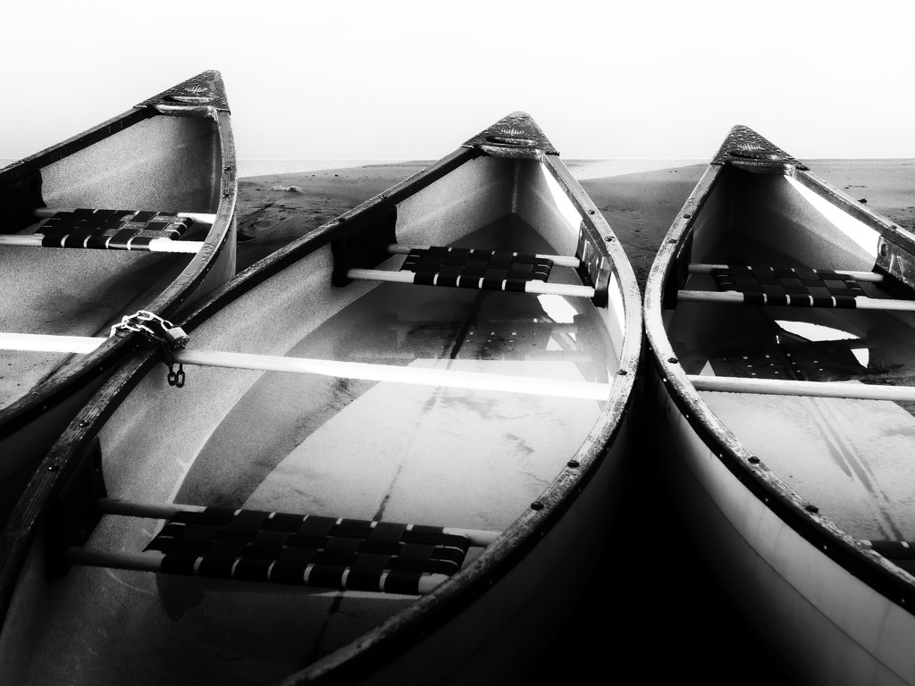 three canoes by northy