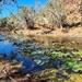 Paradise in the Pilbara